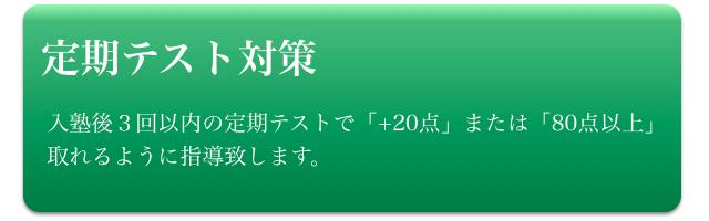 中学生(定期テスト対策)