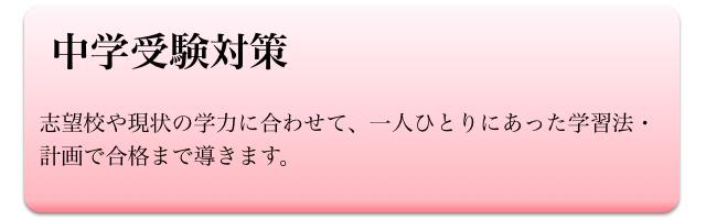 小学生(中学受験対策)